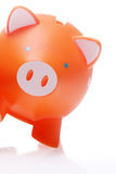 Piggy Orange Stock Images