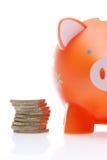 Piggy Orange Stock Photos