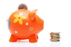Piggy orange with coin Royalty Free Stock Image