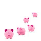 Piggy packa ihop arkivbilder