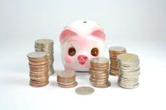 Piggy packa ihop Royaltyfria Bilder
