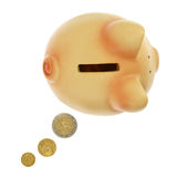 Piggy packa ihop med myntar Royaltyfri Bild