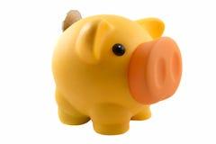 Piggy packa ihop med myntar Arkivbild