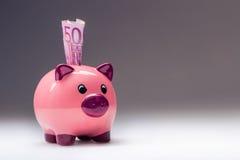 Piggy packa ihop Rosa Piggy räddning och femhundra eurosedlar tonat foto Arkivfoton