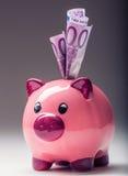 Piggy packa ihop Rosa Piggy räddning och femhundra eurosedlar tonat foto Arkivbilder