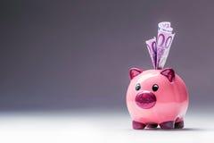 Piggy packa ihop Rosa Piggy räddning och femhundra eurosedlar tonat foto Arkivbild