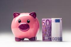 Piggy packa ihop Rosa Piggy räddning och femhundra eurosedlar tonat foto Royaltyfria Bilder