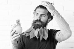Piggy pig bank forgot something on white brick wall background, hipster with leaves in beard. Piggy pig bank forgot something on white brick wall background stock photography
