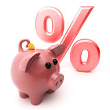 Piggy pig and discounts. Piggy pig on baclground discounts Stock Image