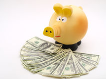 Piggy piggy bank on white background Stock Photo