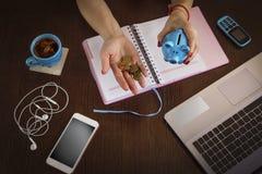 Piggy-piglet, freelancer, woman, at her desk, laptop, smartphone, stock images