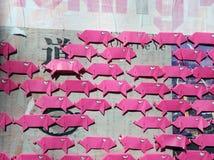 piggy pink Royaltyfria Bilder