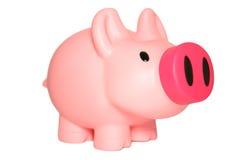 piggy pink för grupp Royaltyfri Bild