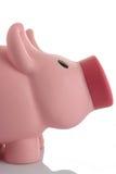 piggy pink för gruppmoneybox Royaltyfri Foto