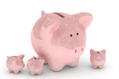 Piggy Querneigung über Weiß Lizenzfreies Stockbild