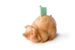 Piggy Querneigung Lizenzfreie Stockfotos