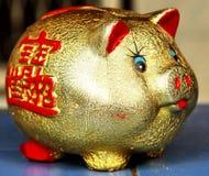 Piggy Querneigung. Stockfotografie
