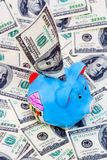 Piggy Querneigung auf Dollarhintergrund Lizenzfreie Stockbilder
