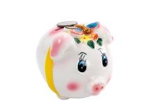 Piggy Querneigung auf einem Weiß Stockbilder