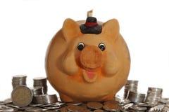Piggy Querneigung auf Münzen Stockbilder