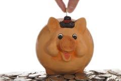 Piggy Querneigung auf Münzen Lizenzfreie Stockfotografie