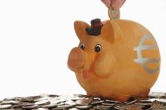Piggy Querneigung auf Münzen Stockfotos