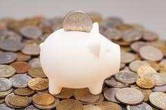 Piggy Querneigung auf Münzen Stockbild