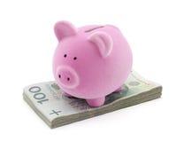 Piggy Querneigung auf polnischem Geld lizenzfreie stockfotografie