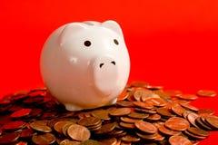 Piggy Querneigung auf Rot Lizenzfreie Stockfotografie