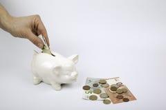 Piggy Querneigung auf weißem Hintergrund Lizenzfreie Stockfotografie