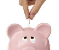 Piggy Querneigung, die oben nach der Münze sucht lizenzfreie stockfotos