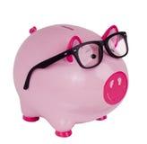 Piggy Querneigung, die schwarze Schauspielgläser trägt Stockbilder