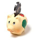 Piggy Querneigung getrennt auf weißem Hintergrund lizenzfreies stockfoto