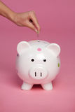 Piggy Querneigung-Münze Lizenzfreie Stockfotos