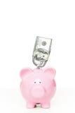 Piggy Querneigung mit Dollarschein Stockbilder