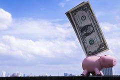 Piggy Querneigung mit einem Dollar Stockfotos