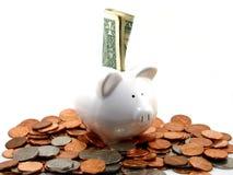Piggy Querneigung mit Geld Stockbilder