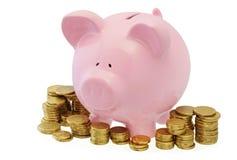 Piggy Querneigung mit Münzen Stockbilder