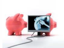 Piggy Querneigung mit Röntgenstrahlen Lizenzfreie Stockfotografie