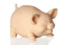 Piggy Querneigung mit Reflexion auf dem Fußboden Lizenzfreie Stockfotografie