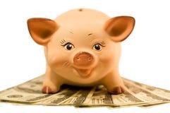 Piggy Querneigung (moneybox) Lizenzfreie Stockfotos