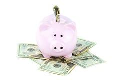 Piggy Querneigung und Bargeld Stockbilder