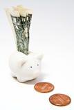 Piggy Querneigung und Dollarschein Lizenzfreie Stockfotografie