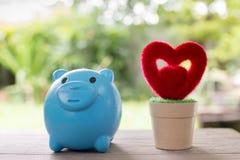 Piggy Querneigung und rotes Inneres Lizenzfreies Stockfoto