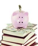 Piggy Querneigung und Schule-Bücher lizenzfreies stockbild