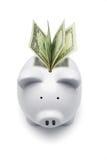 Piggy Querneigung und US-Dollars lizenzfreies stockbild