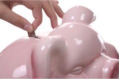 Piggy Saves. Teen with big pink piggy bank Stock Image