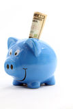 Piggy Saving Dollar Royalty Free Stock Photo