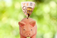 Piggy savings bank. With the ticket on a natural background Stock Images