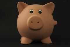 Piggy Schwein Stockfoto